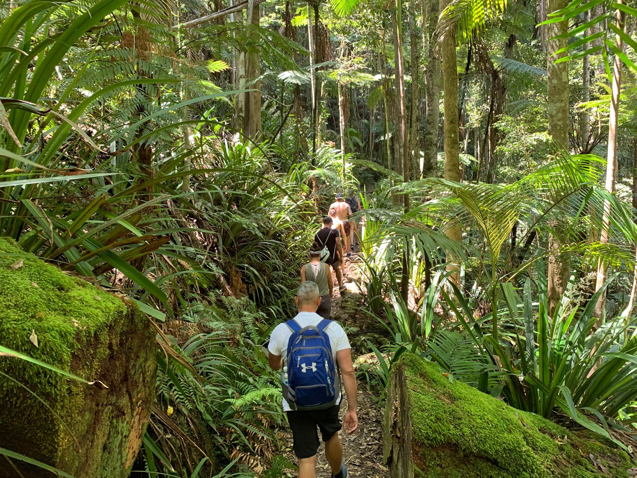 Climb Mount Warning