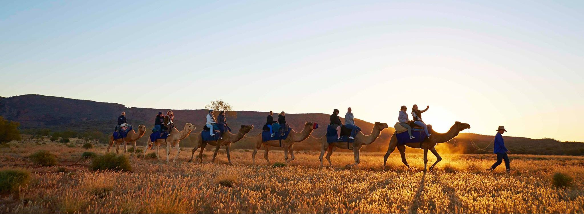 Afternoon Camel Ride