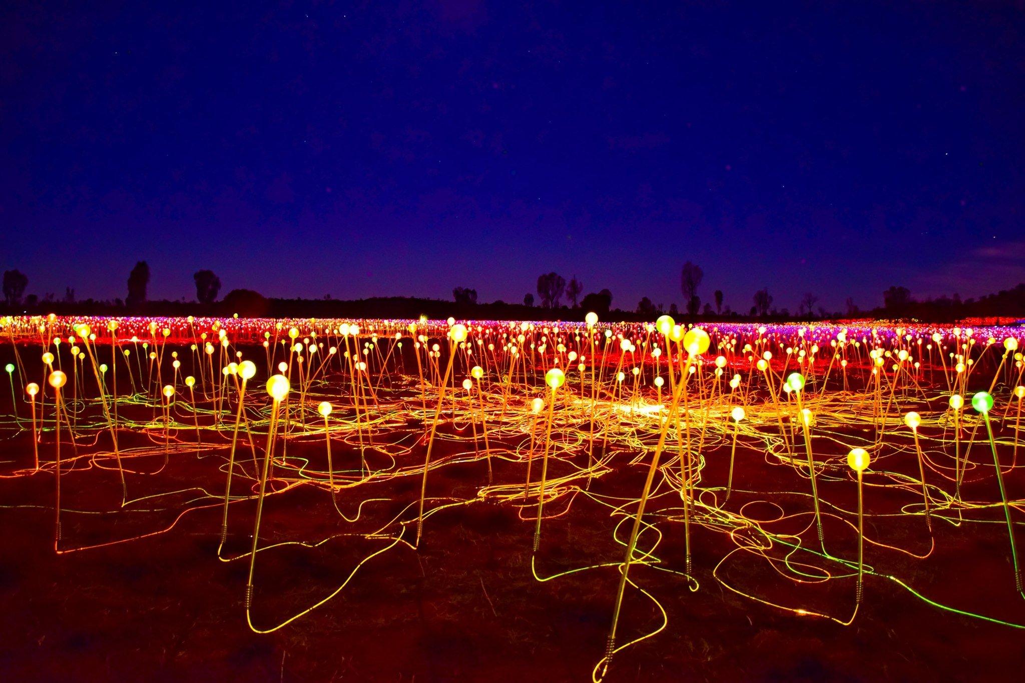 Field of Light Dinner
