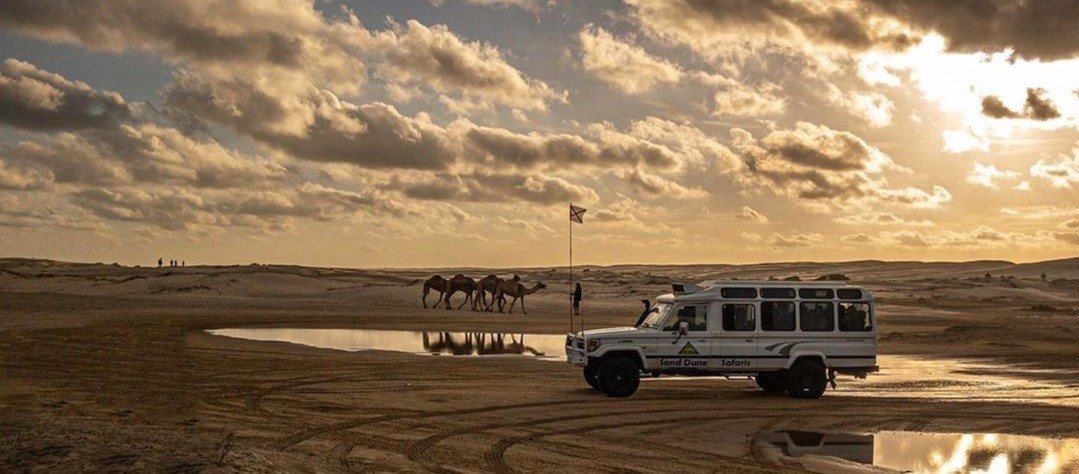Ride the Sand Dunes in Port Stephens
